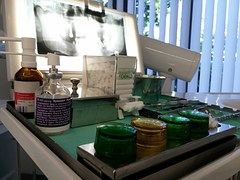 dentysta NFZ legnica