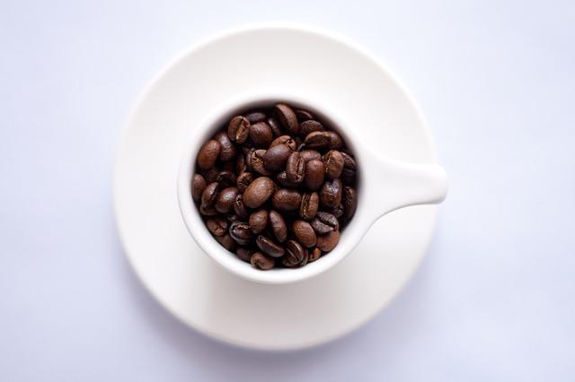 naprawa ekspresów do kawy Toruń