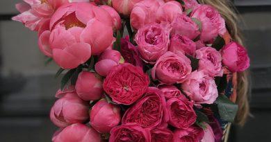 Wybór kwiatów a ich znaczenie